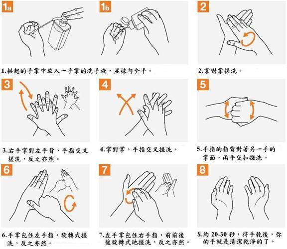 乾洗手液之洗手技術,如下說明