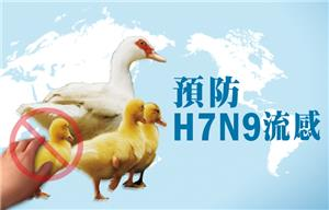 "As new H7N9 case confirmed in Guangdong Province, China, Taiwan CDC urges travelers visiting affected areas in China to practice ""5 Do's and 6 Don't's"" to ward off infection"