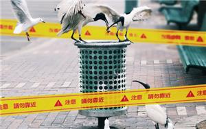 "As world's first H7N4 case confirmed in Jiangsu Province, China, Taiwan CDC urges travelers Jiangsu Province to practice ""5 Do's and 6 Don't's"" to ward off infection"