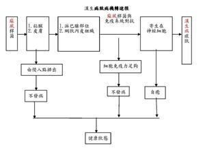 漢生病治病機轉途徑,詳見附件 PDF檔